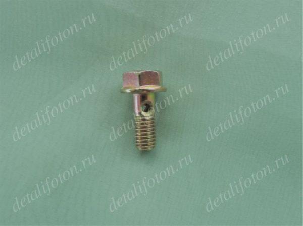 Болт пустотелый масляной трубки генератора Фотон(Foton)-1039/1049C E049362000005